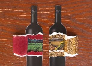 Blog Artwork for Terlato Wines
